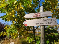 Wegweiser Dürerweg